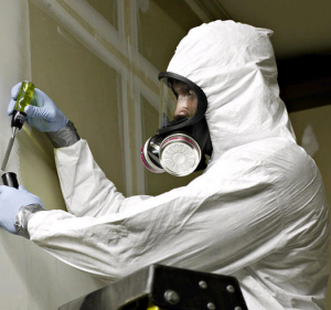 Asbestos_Training_MDHS